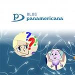 Acceso al blog.panamericana